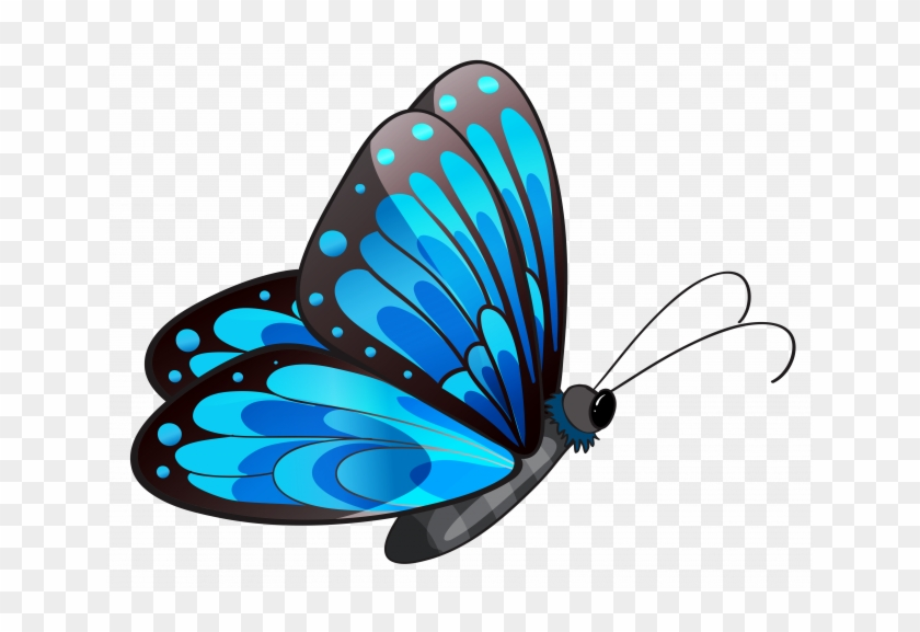 Butterfly Png Clipart Butterfly Clip Art - Colorful Butterfly Throw Blanket #1346538