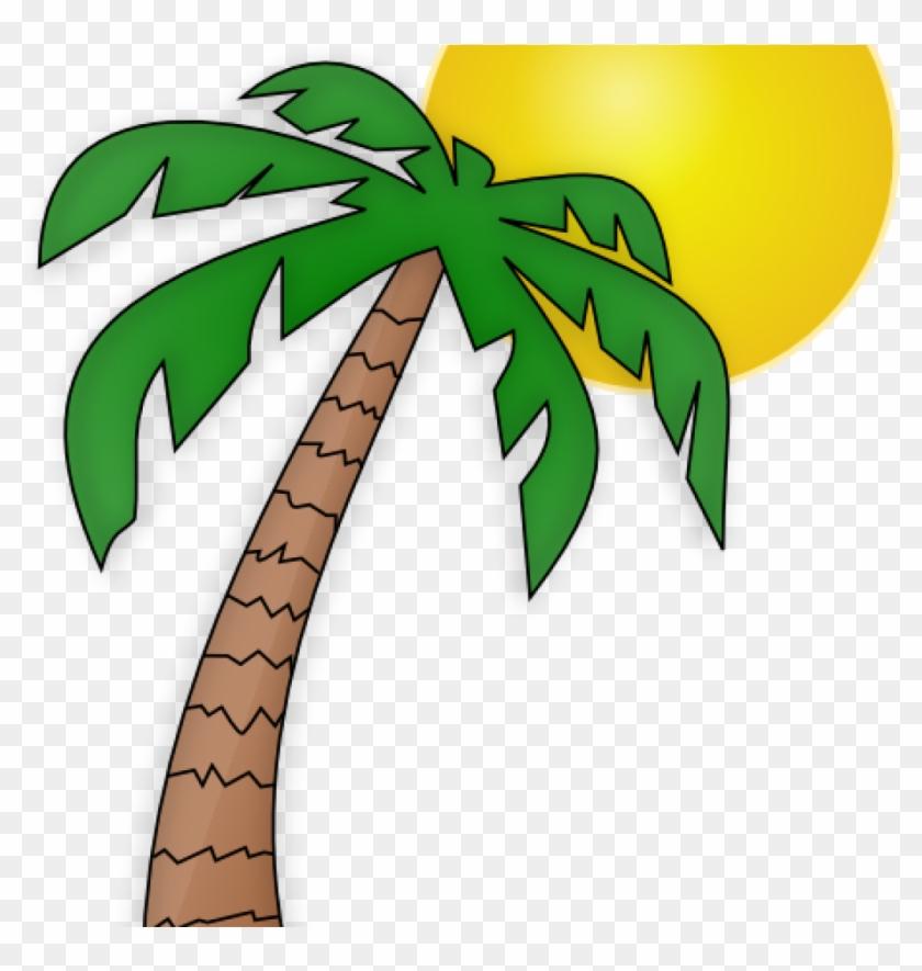 Palm Tree Clip Art Free Palm Tree Clip Art Transparent - Cartoon Palm Tree With A Coconut #1353002
