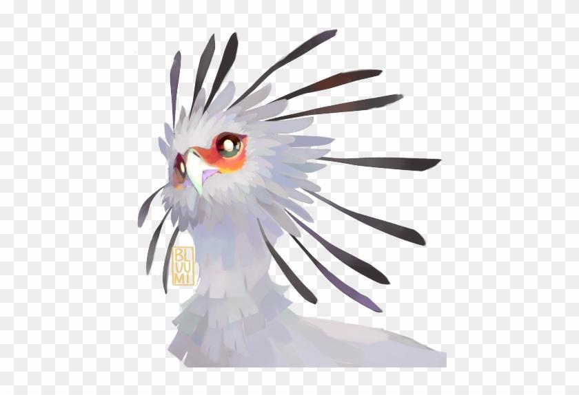 Clip Art Freeuse Download Cockatoo Drawing Face - Paint Tool Sai Watercolor Brush #1363318