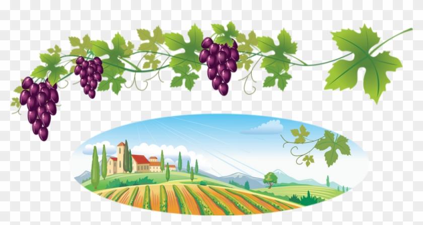 Bottle Of Wine Throw Blanket #1363615