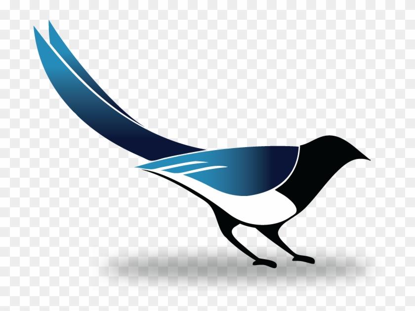Magpie Clipart Transparent Png Magpie Free Transparent Png Clipart Images Download