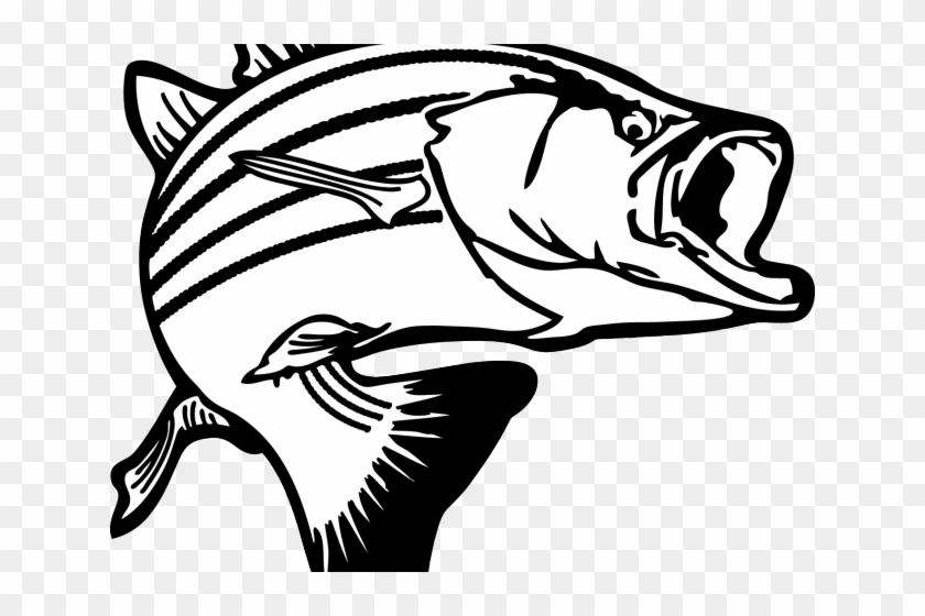 Black Outline Vector Fishing Net And Fish On White Background. Royalty Free  Cliparts, Vectors, And Stock Illustration. Image 25307044.