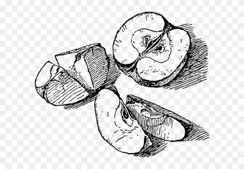 Free Vector Sliced Apple Clip Art - Apple Slice Line Art #218065