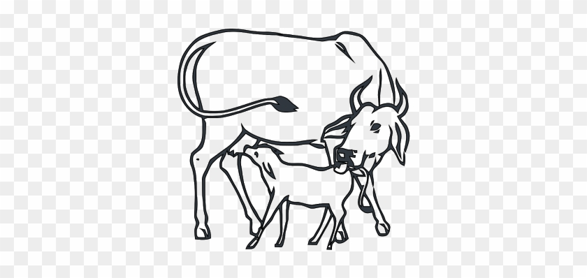 Love our dairy cows! Color her in :) | Cow coloring pages, Farm ... | 398x840