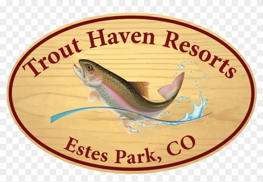 Haven Resorts Estes Park Resort - Trout Haven Resorts #1409257