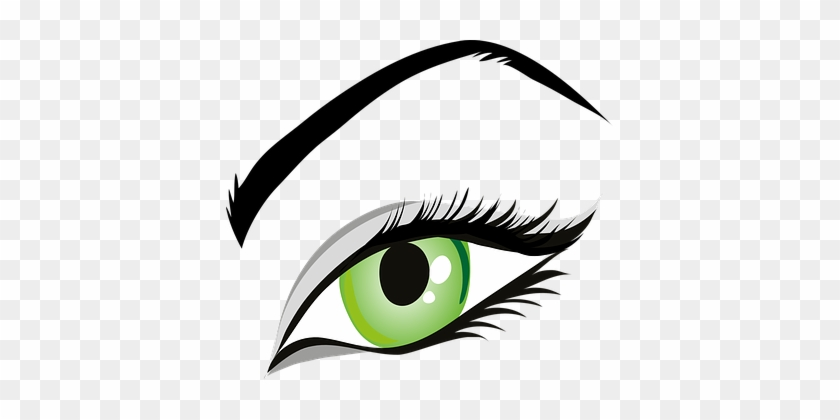 Eye Green Eyes Iris Eyelid Eyebrows Brows - Eye Clipart #219552