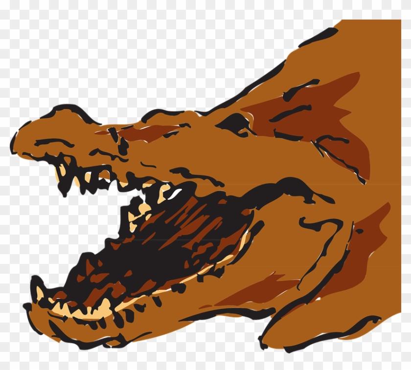 Brown Alligators #220316