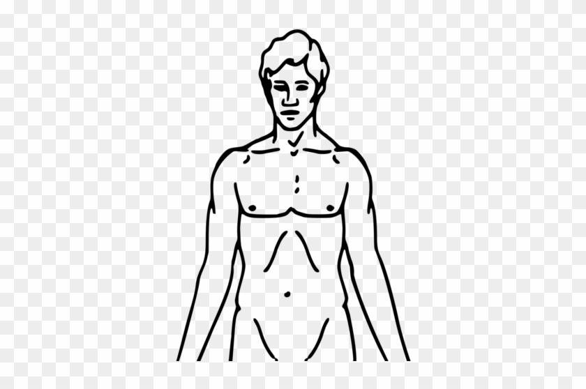 filepioneer plaque man upper body as diagram template - chemical basis of  love