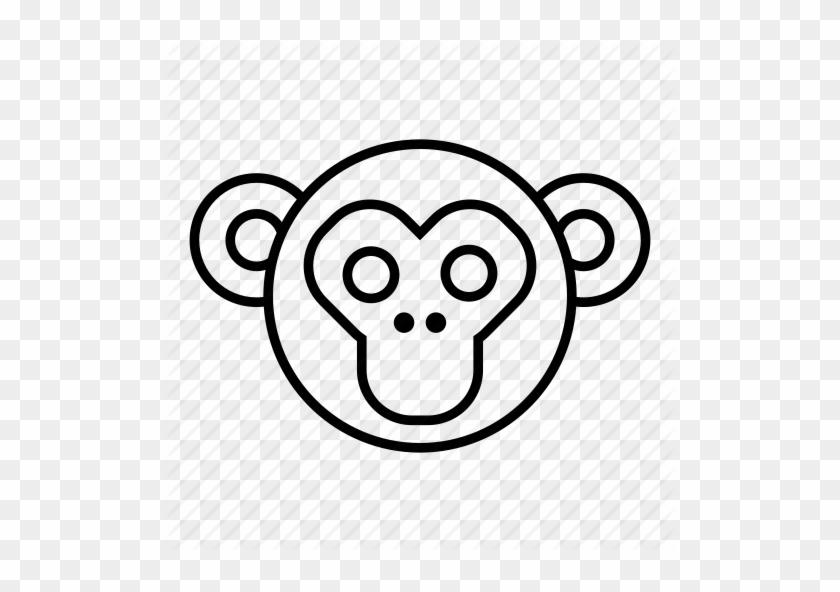 Baboon Chimp Chimpanzee Monkey Monkey Face Orangutan Easy To