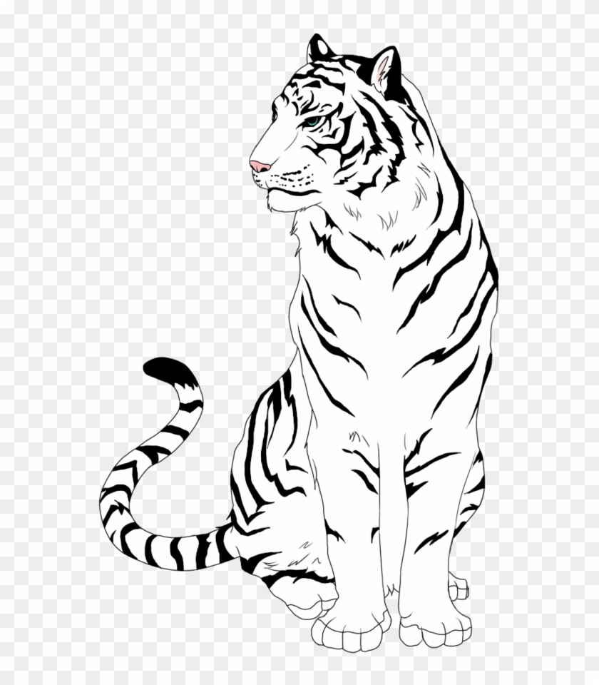 Sitting - Clipart White Tiger A Free Easy - Draw Tiger