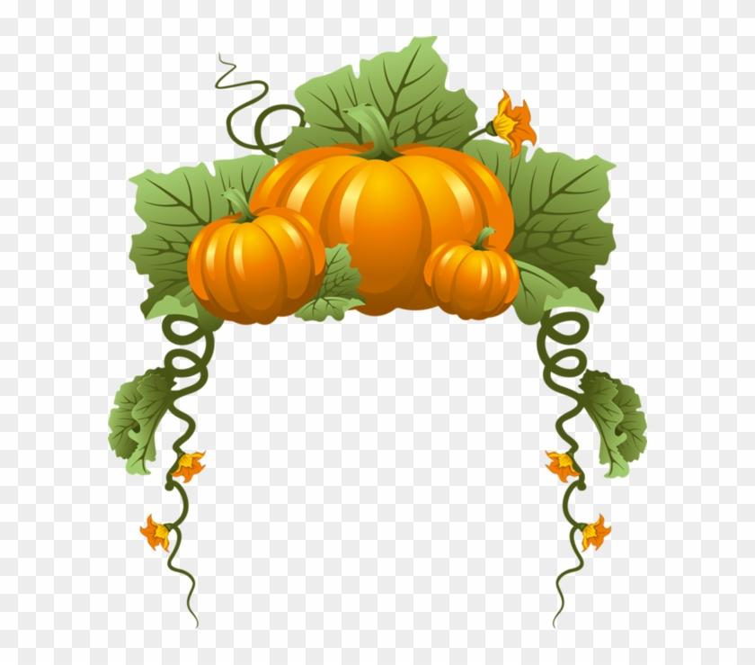 Tubes Halloween - Fall Pumpkins Border #230115