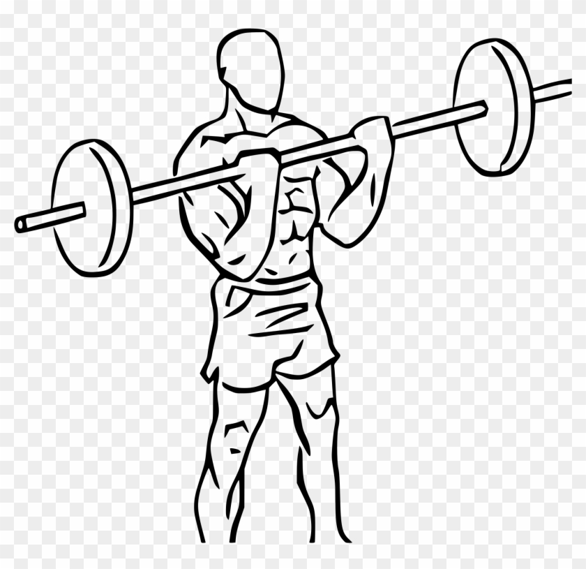 Graphic Transparent Stock Bicep Clipart Weightlifting