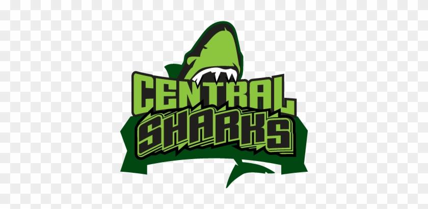 Color Shark Mascot - Mascot #1471034