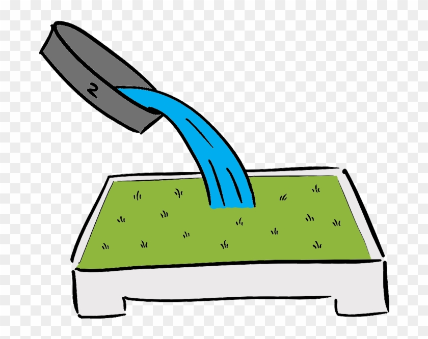 Pour Water & Soap Over The Grass - Pour Water & Soap Over