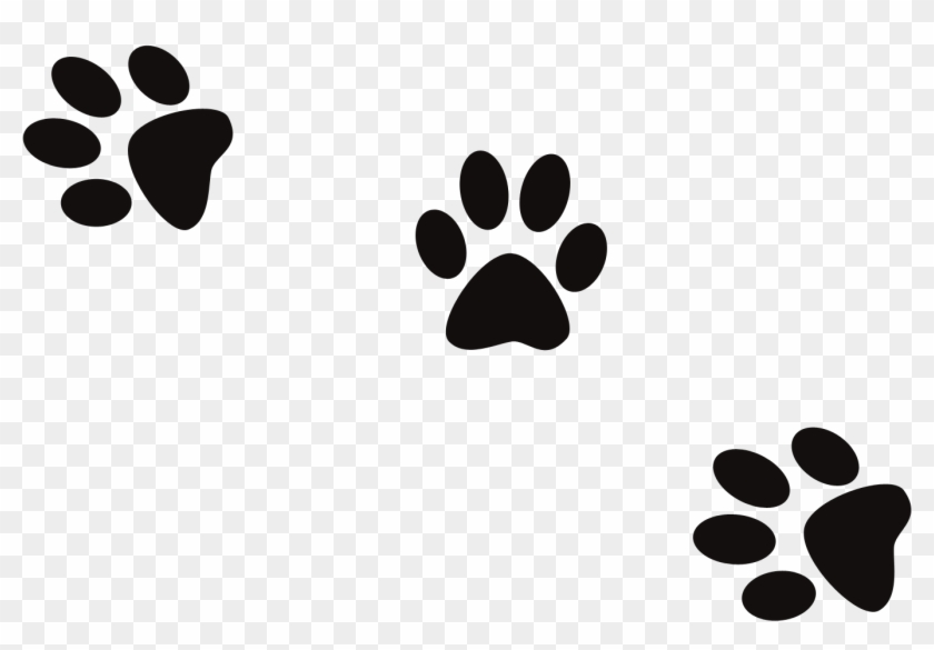 Conjuring Creek Boarding Kennels News - Dog Footprint Logo Png #235597