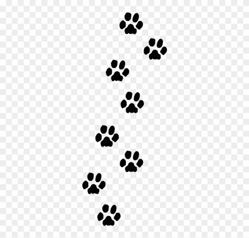 Paw Print Trail Clipart Transparent Dog Paw Print Free