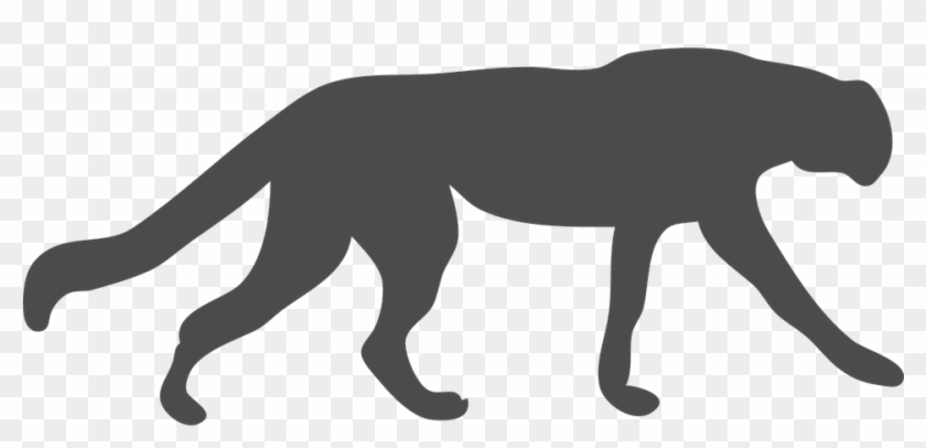 Wildcat Clipart Cougar - Black Panther Animal Outline #235873