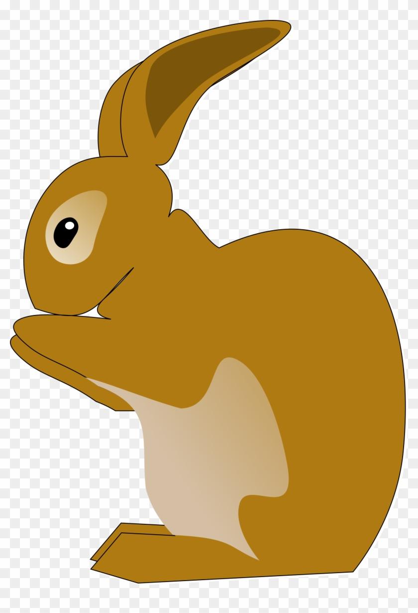 Rabbit - Bunny Rabbit Shower Curtain #237308