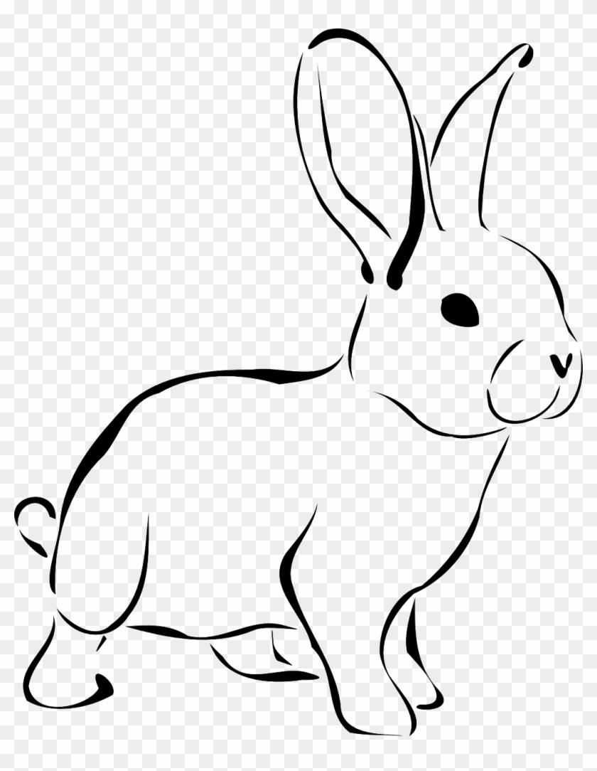 Kaninchen, Tier, Tierwelt, Natur, Hase, Frühling - Rabbit Clipart Black And White #237561