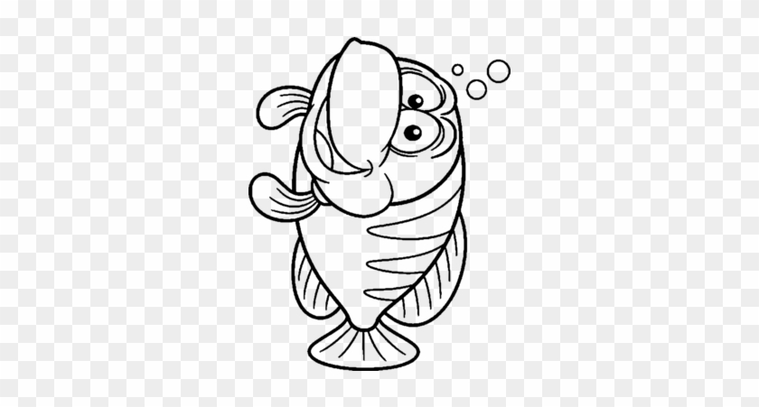 fisch malvorlage   kinder ausmalbilder
