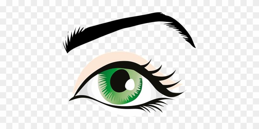 Auge, Grünen Augen, Augenlid, Iris - Human Eye Clip Art #237681