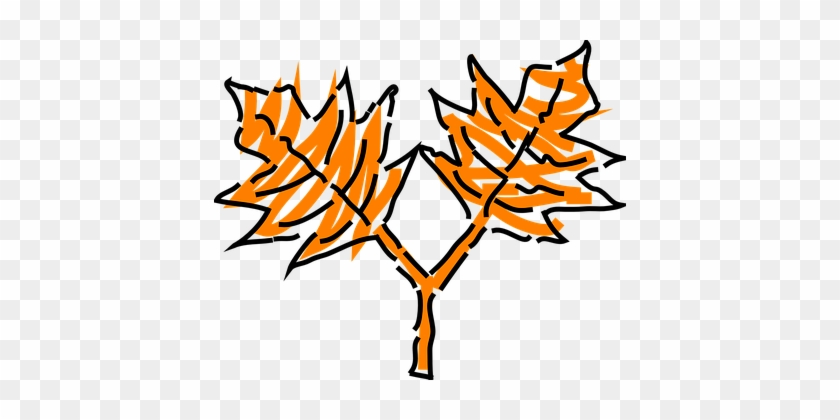 Blatt, Eiche, Stammzellen, Orange, Baum - Dibujo De Las Cuatro Estaciones Del Año #237759