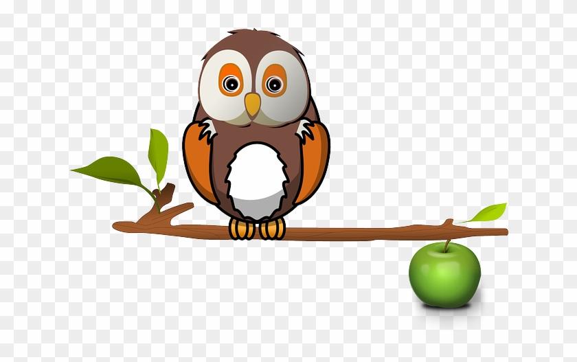 Apple Zweig Eule Baum Eule Eule Eule Eule - Owl On Branch Clipart #237890