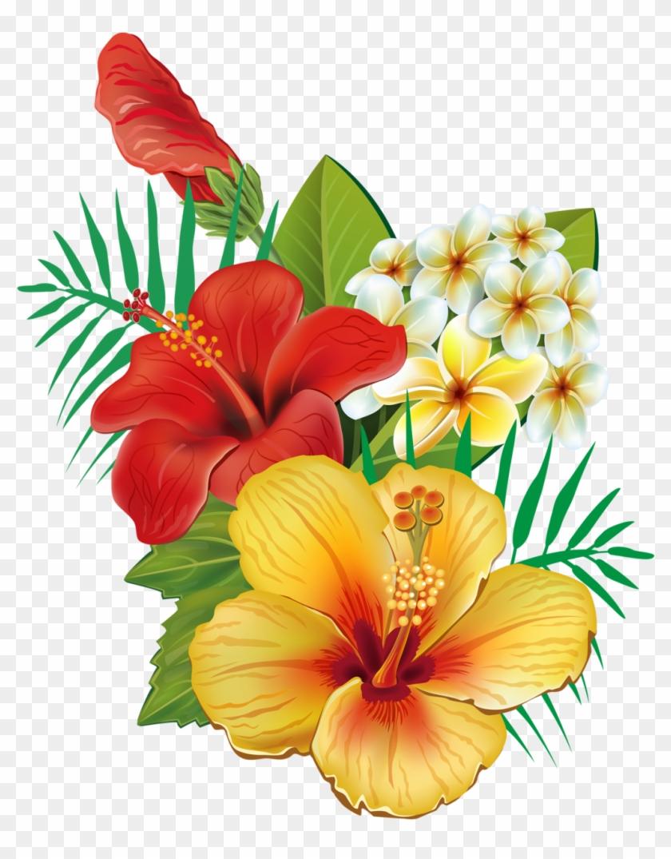 Erkunde Dissen, Exotische Blumen Und Noch Mehr - Cafepress Tropical Hibiscus Tile Coaster #238969
