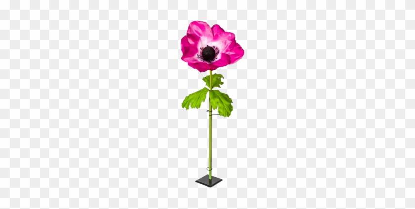 Anemone Xl Pink H 120 Cm O 50 Cm Deko Blumen Xxl Free