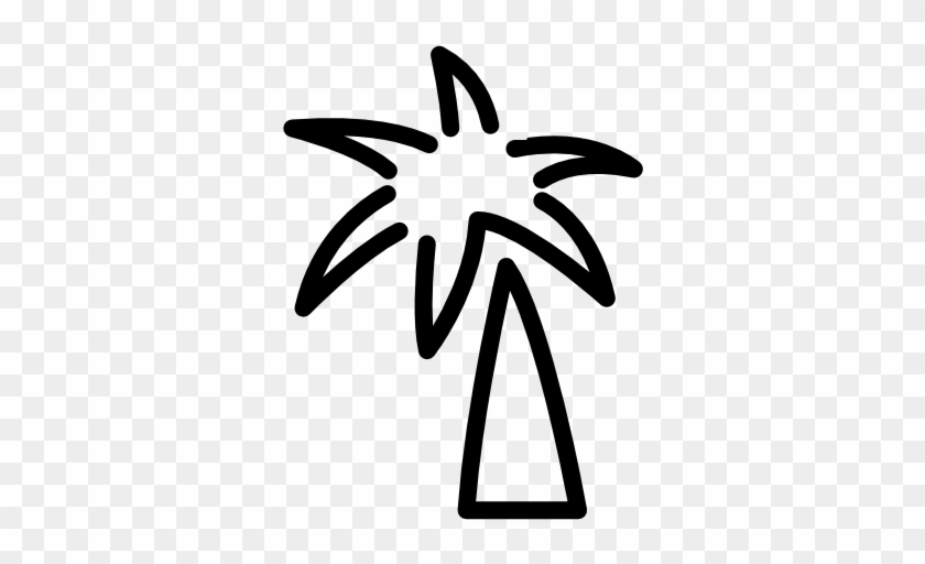 Tropical Coconut Tree Icons - Palm Tree Doodle Png #36336