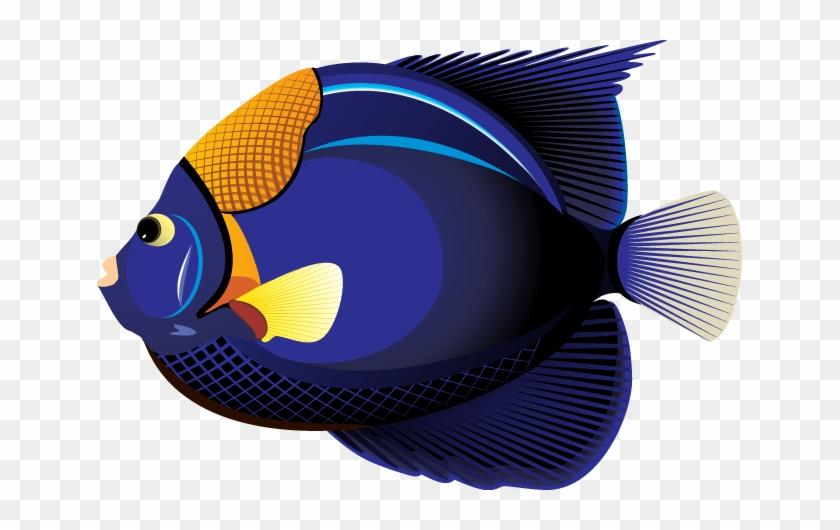 Clipart Fish - Tropical Fish Clip Art #37251