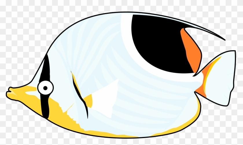 Tropical Fish Clip Art #37406