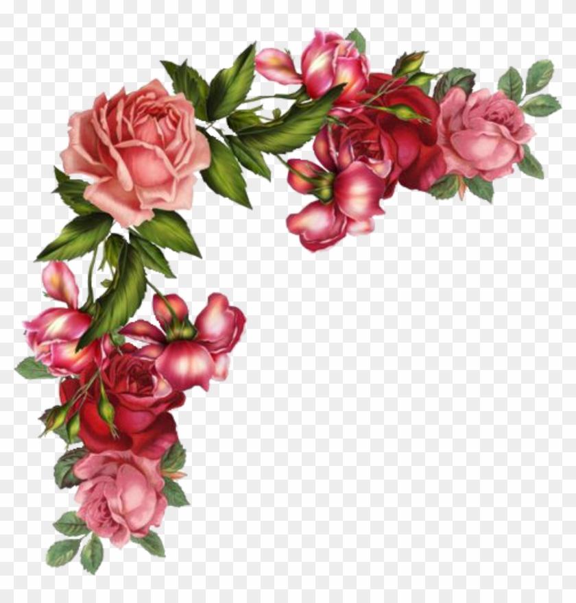 christmas flower rose