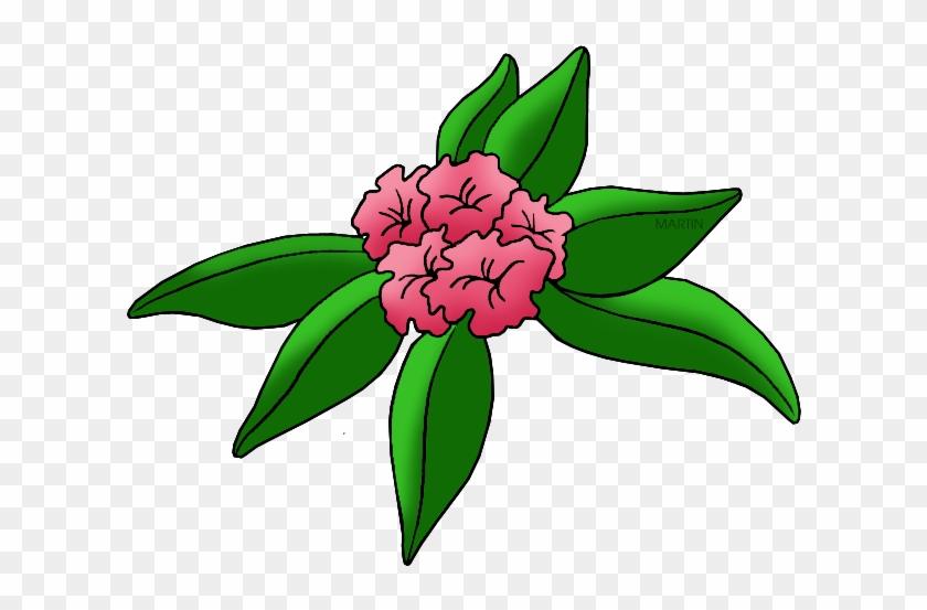 United States Clip Art By Phillip Martin, State Flower - State Flower Of Washington #38533