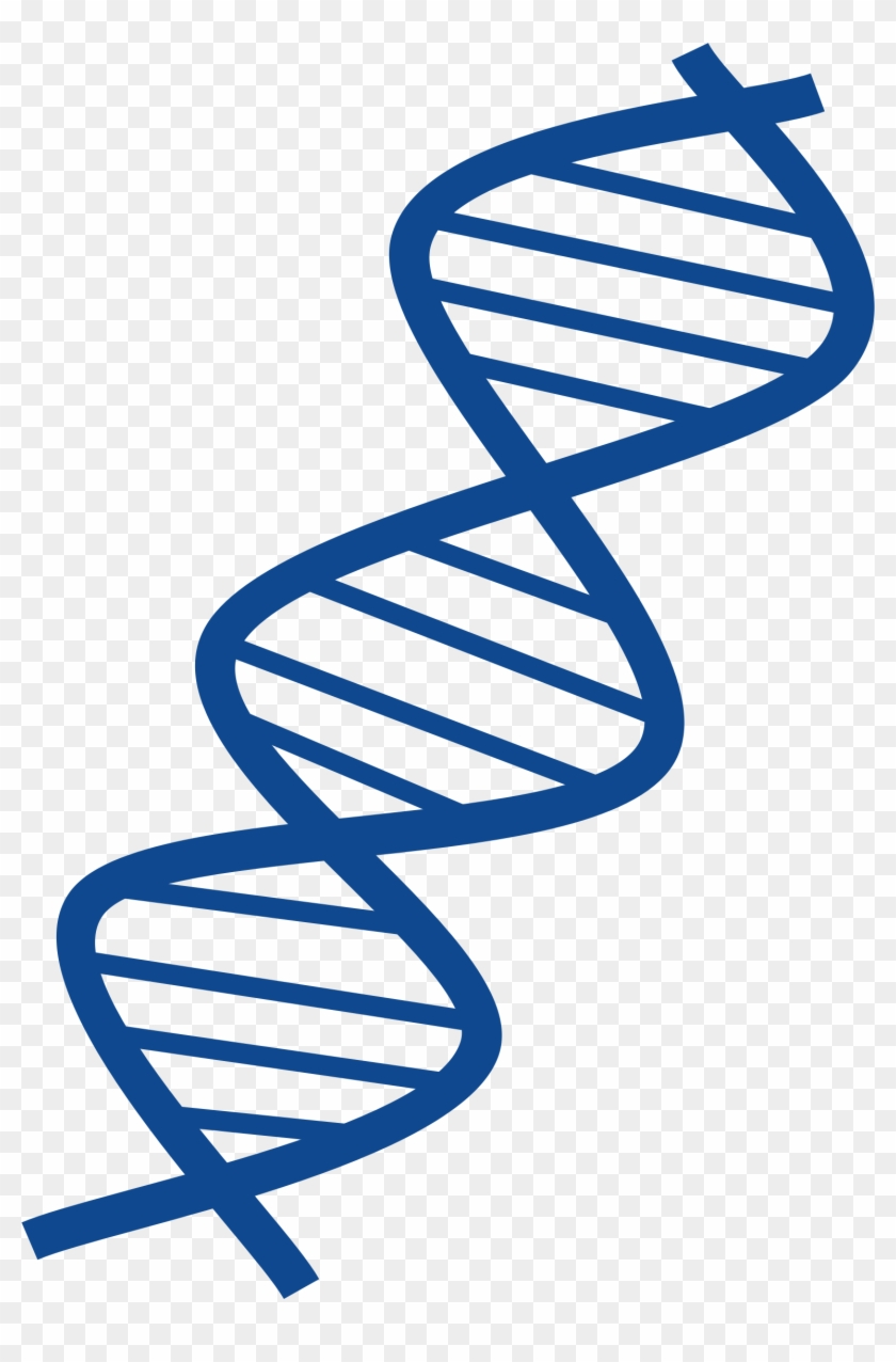 Dna Clipart Transparent
