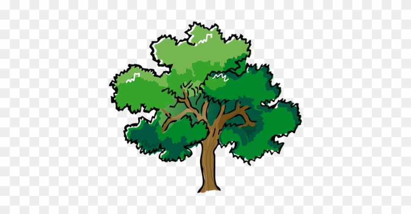 Low Cost Street And Yard Trees - Oak Tree Clipart #39013