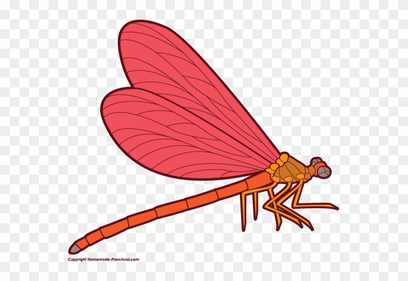 Click To Save Image - Dragonfly Clipart Png #39666