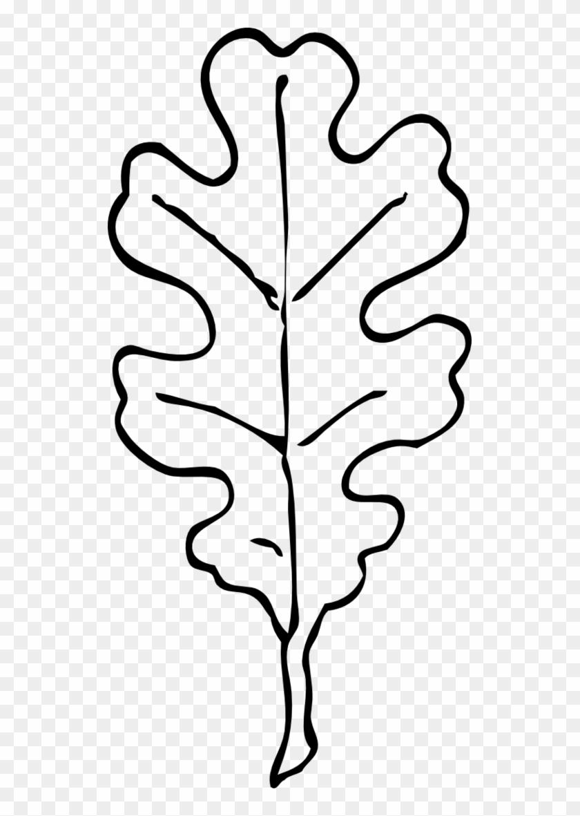 Oak Leaf Coloring Page Clipart Free To Use Clip Art - Oak Leaf Clip ...