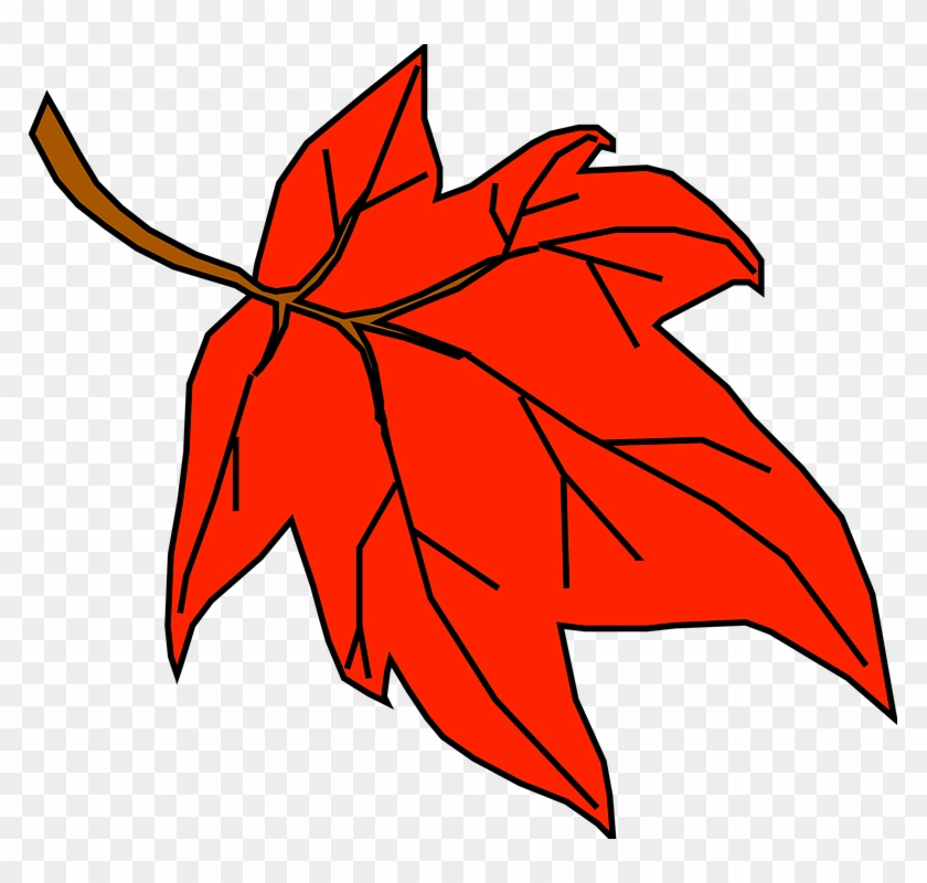 Red, Fall, Outline, Yellow, Leaf, Tree, Cartoon, Orange - Fall Leaves Clip Art #40410