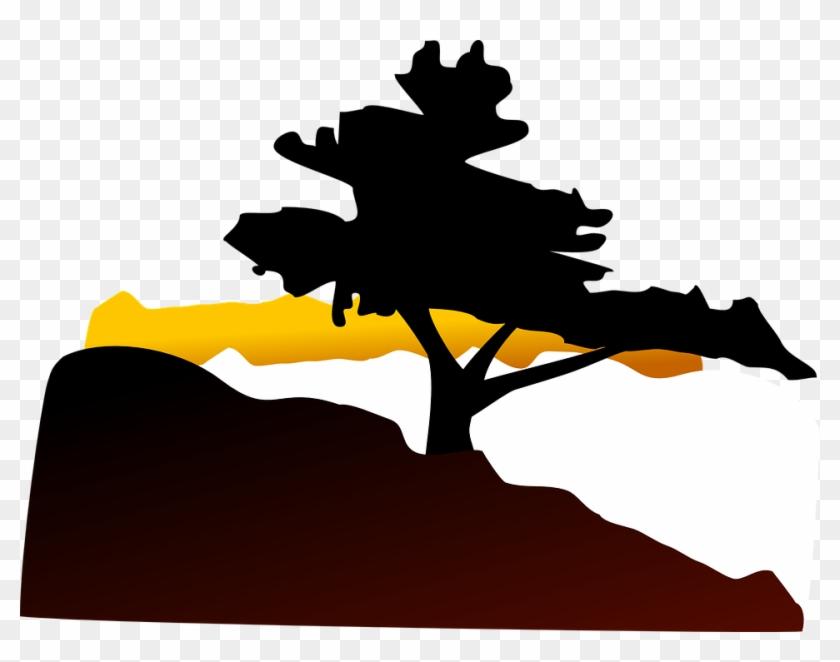 Tree, Hill, Sunset, Landscape, Twilight - Bonsai Tree Clip Art #41136