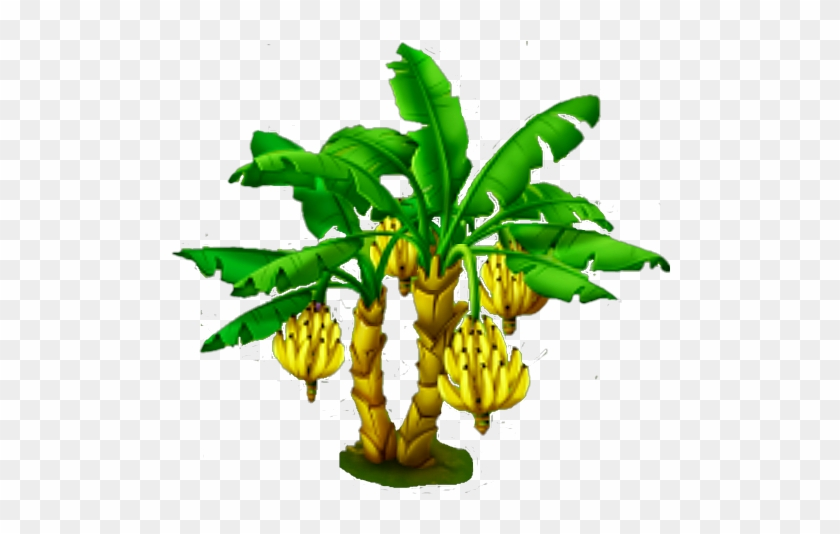 Banana Tree - Plants - Free Transparent PNG Clipart Images