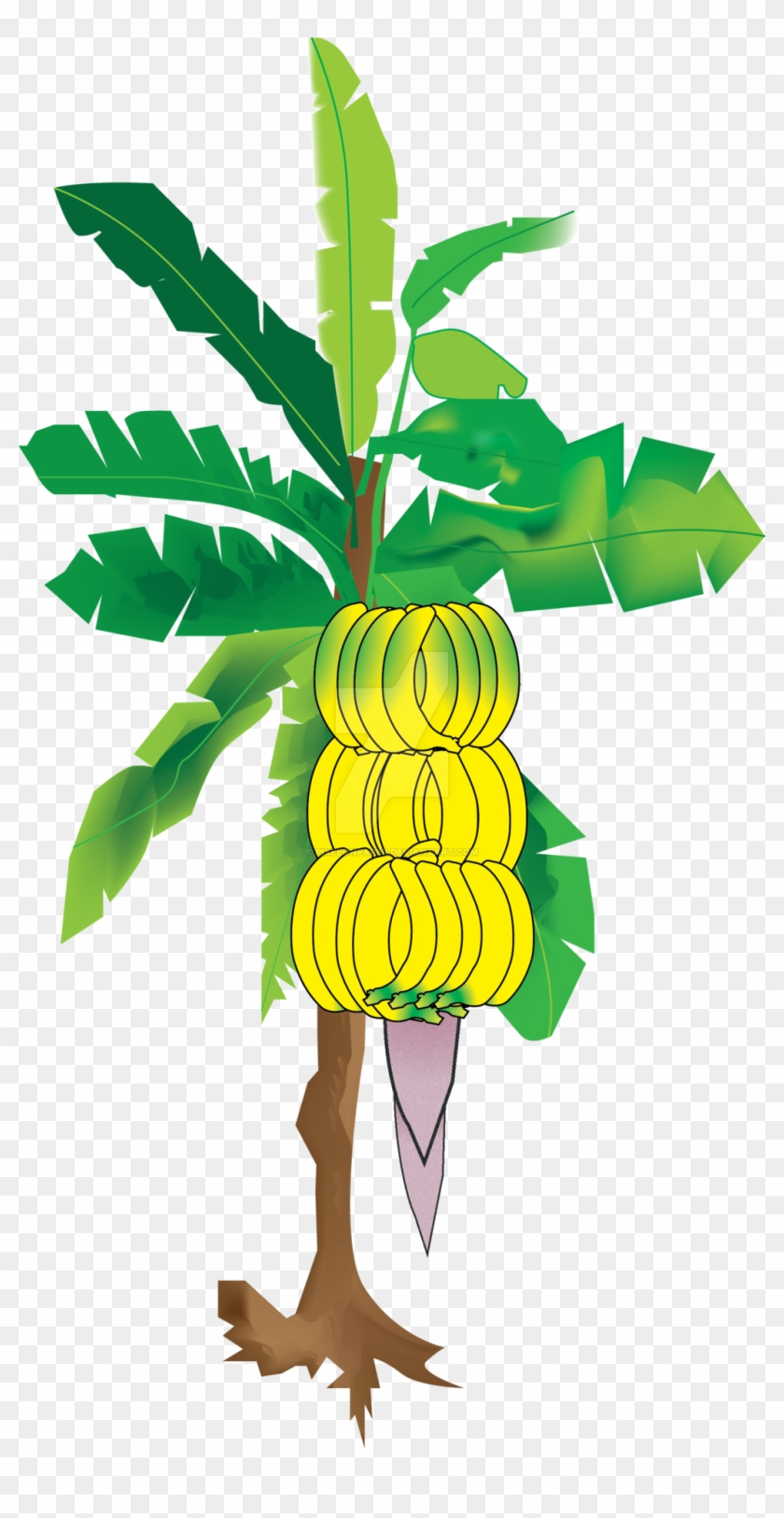 Bananatree Illuatration By Pixelonpaper - Banana Tree Hd Imajes #41746
