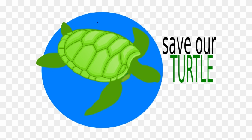 Save The Turtle Clipart #42054