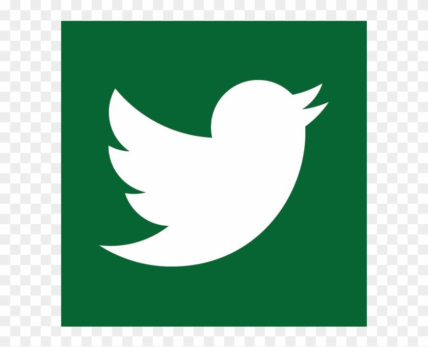 Facebook Twitter Youtube Snapchat - Emblem #42213