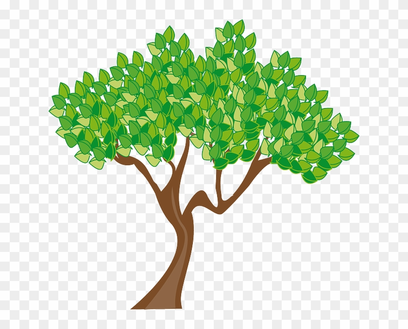 Season Summer Tree Leaves Green Trunk Wood - Spring Trees Clip Art #42403