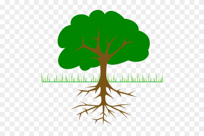 Tree, Branches, Root, Trunk, Planting - Tree Clip Art #42590