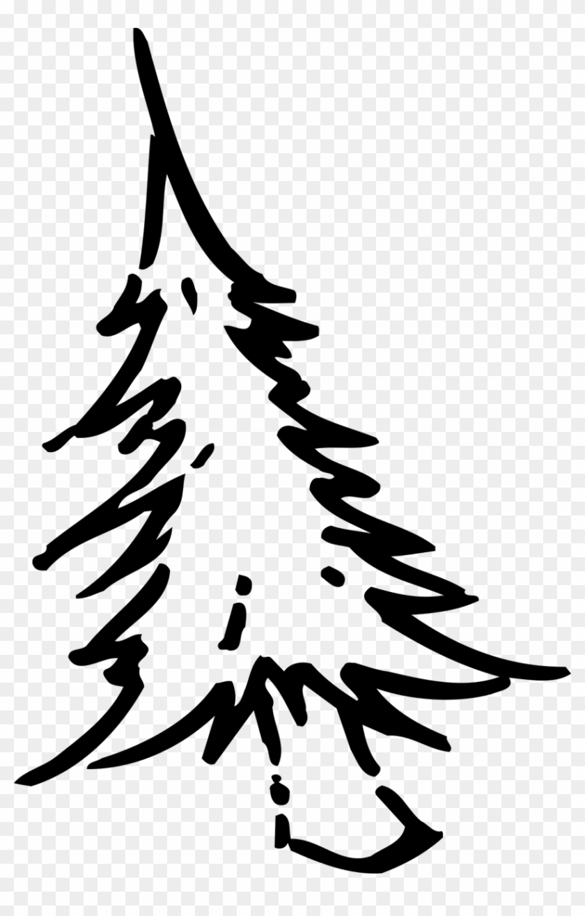 How To Draw A Christmas Tree, Coloring - ต้น คริสต์มาส รูป วาด #43366