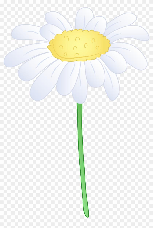 Single White Daisy Flower Free Clip Art Flower Clip Art Daisy