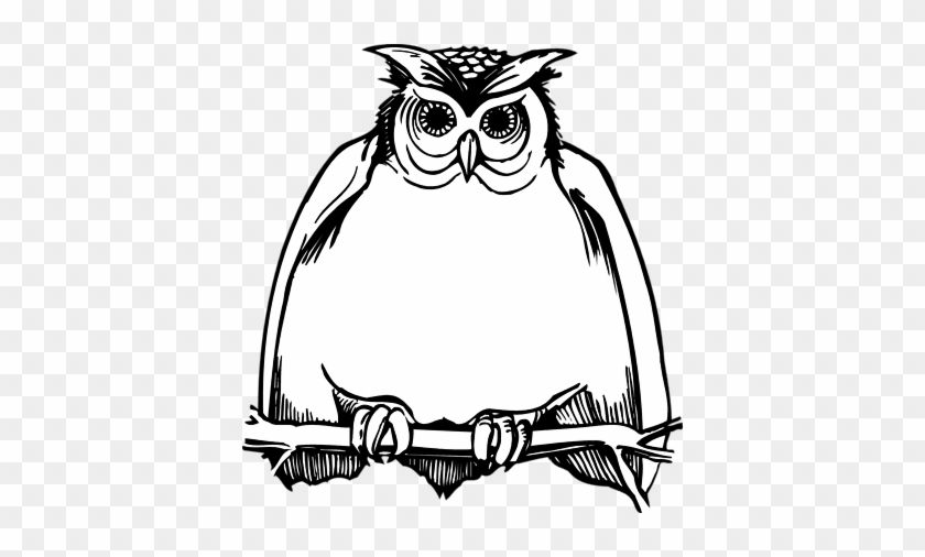 Owl Clip Art Black And White Harry Potter Happy Birthday Card