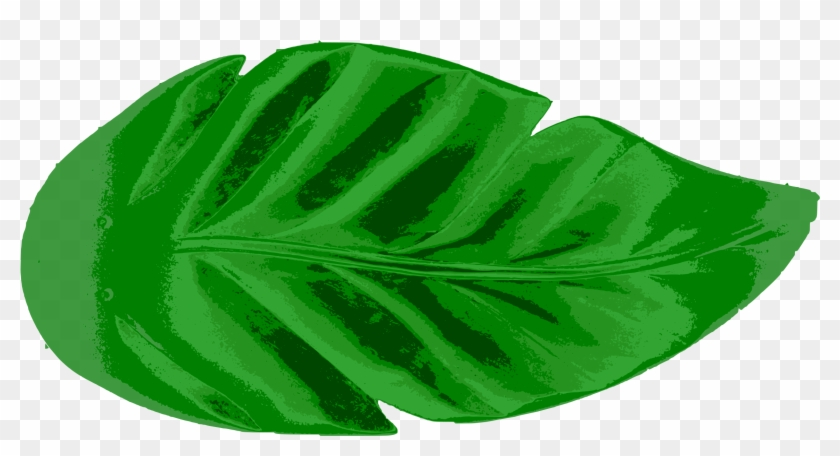 Tropical Leaves Vector Clip Art Eps Images Tropical Leaf Clipart Free Transparent Png Clipart Images Download 22 x separate elements in. tropical leaves vector clip art eps